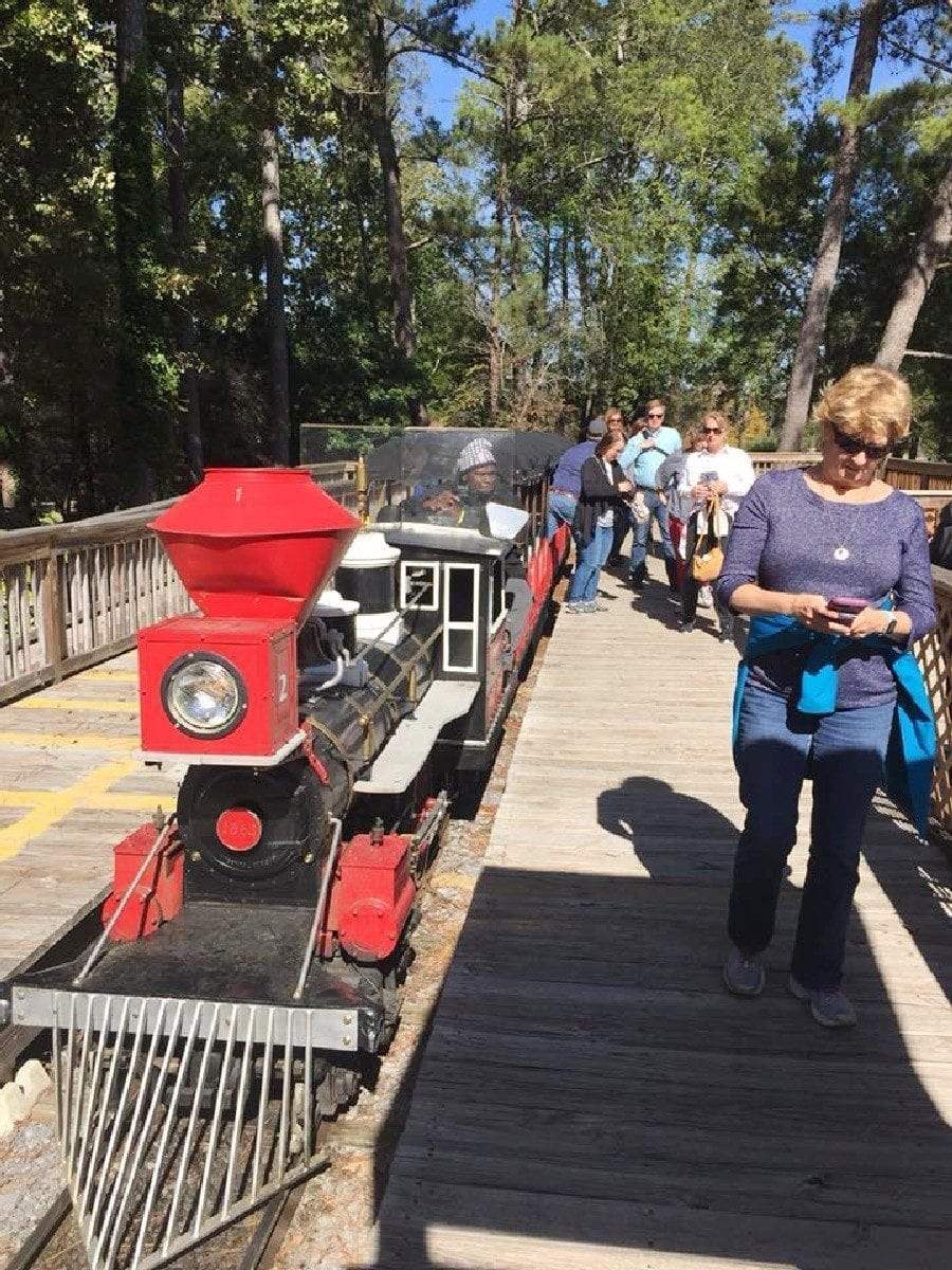 Conference attendees riding train at Noccalula Falls Park.