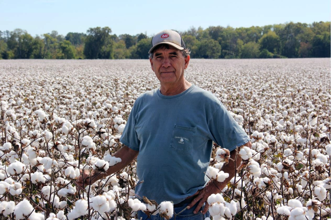 Calhoun County cotton farmer Woody Cheatwood
