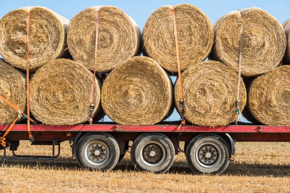 round bales of hay on a trailer
